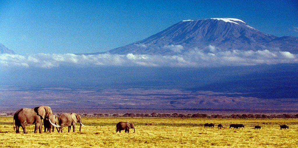Дешевые авиабилеты Санкт-Петербург - Килиманджаро (Танзания)