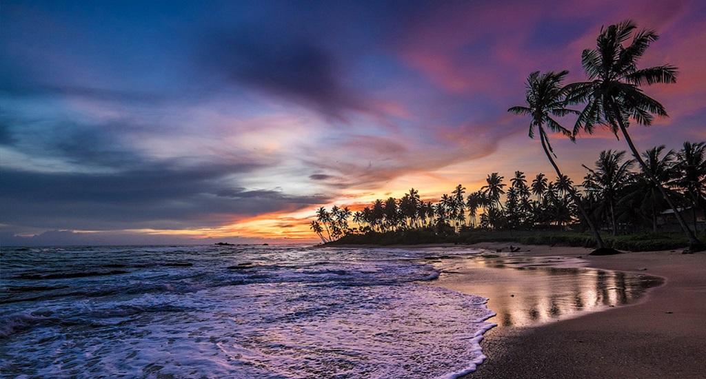 Горящие туры на Шри-Ланку от всех туроператоров