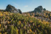 экскурсии на столбы красноярск. красноярский заповедник столбы