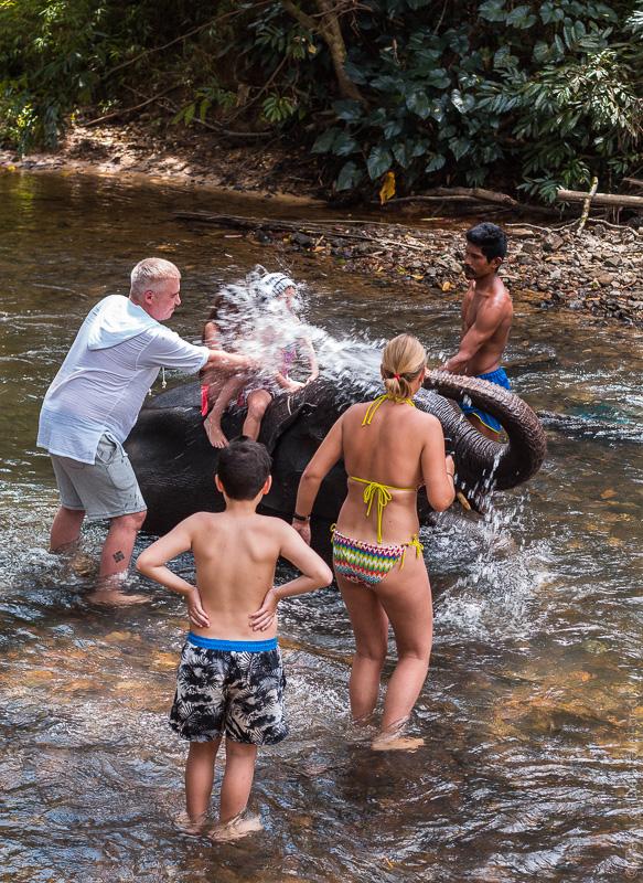 экскурсия в Као Лак купание со слоном