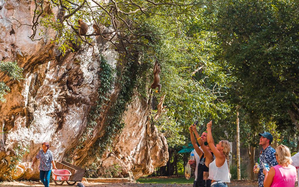 экскурсия в Као Лак храм Suwankuha обезьяны