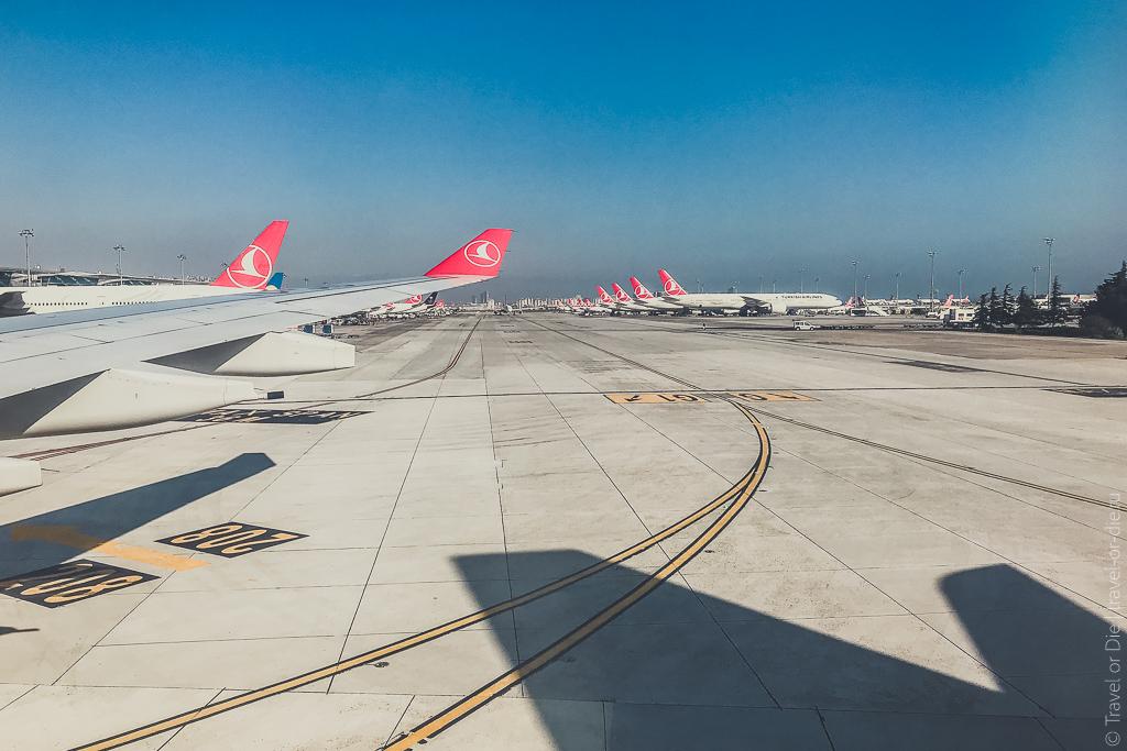 отзыв москва стамбул турецкие авиалинии