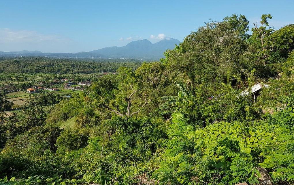 вулкан агунг 20