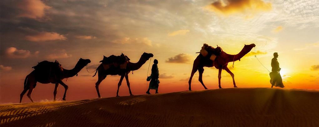 Экскурсия в пустыню в Дубае