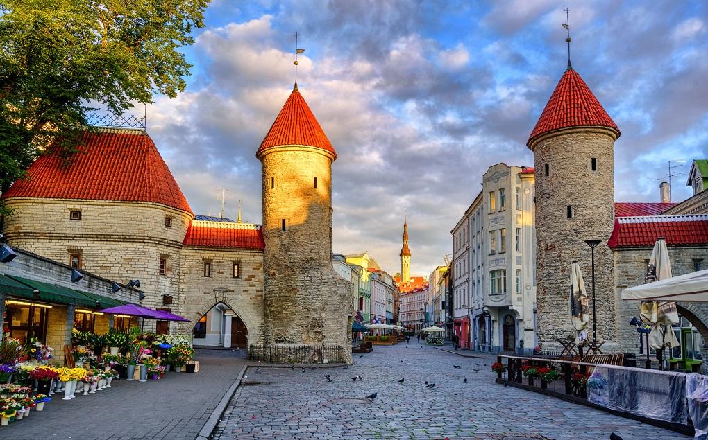 Обзорные экскурсии по Таллину