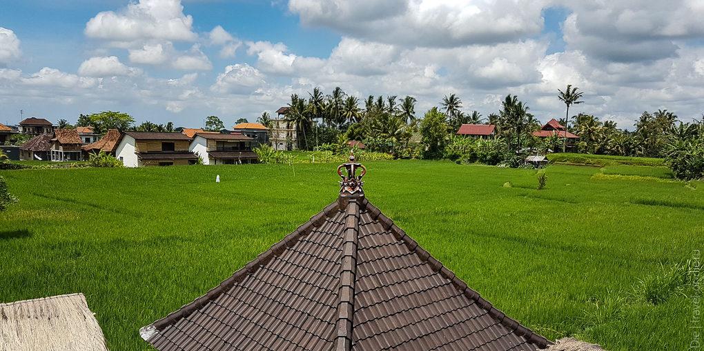 рестораны и кафе убуд индонезия 104220