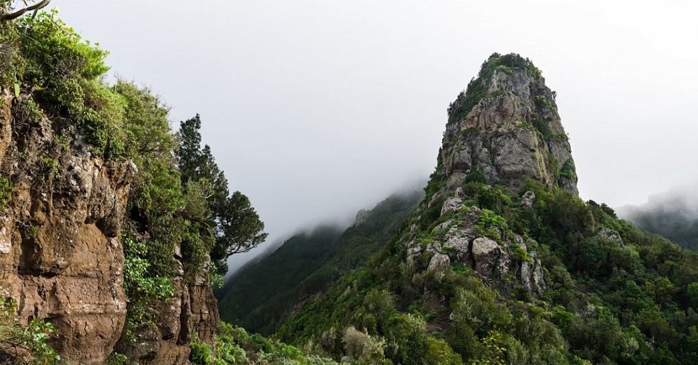 Экскурсия по парку Анага и в деревушку Таганана
