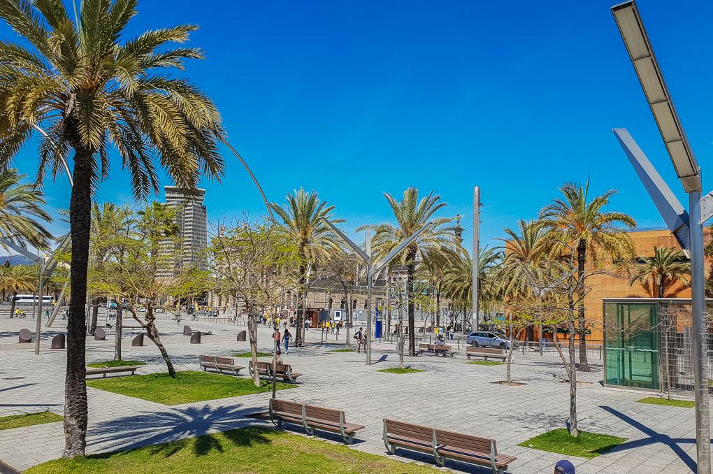 Барселона за 1 день. Экскурсия по Барселоне на автобусе 6