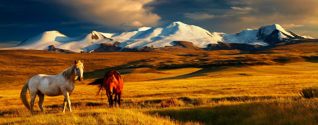 Экскурсионный тур: КБЖД, Байкал, Аршан, Монголия