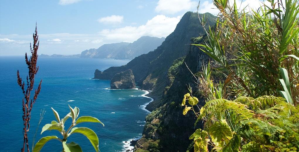 Экскурсии по всему острову Мадейра