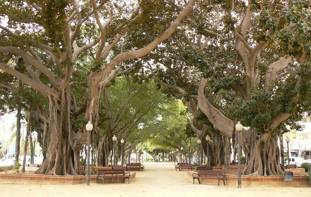 Достопримечательности Аликанте - Парк Каналехас