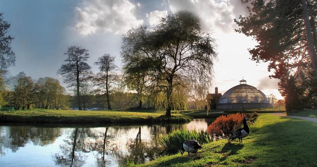 Достопримечательности Стокгольма - Ботанический сад Бергиуса