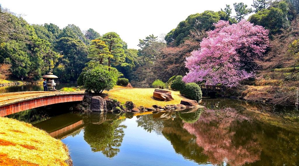 """Достопримечательности Токио - Парк """"Синдзюку-Гёэн"""""""