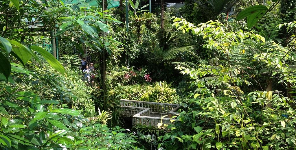Достопримечательности Куала-Лумпура - парк бабочек куала лумпур