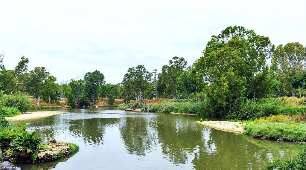 Достопримечательности Тель-Авива - Река и парк Яркон