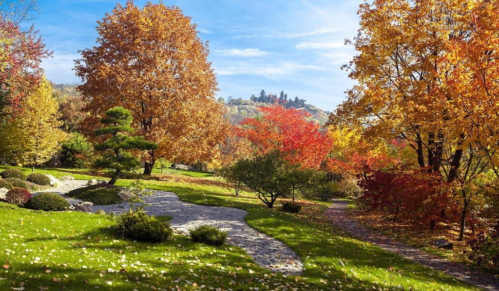 Достопримечательности Праги - Ботанический сад