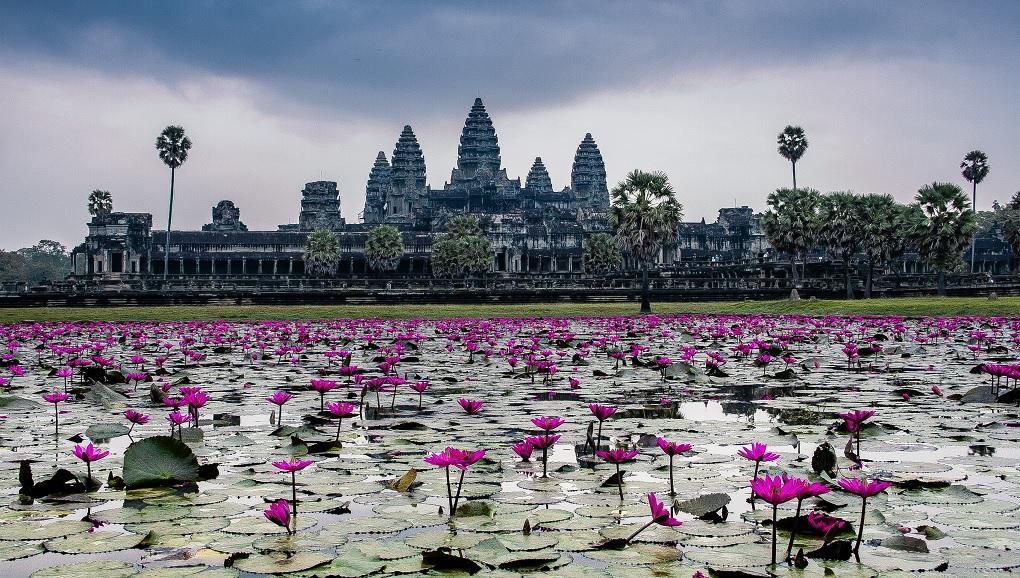 Экскурсии из Сием Рипа в Ангкор-Ват