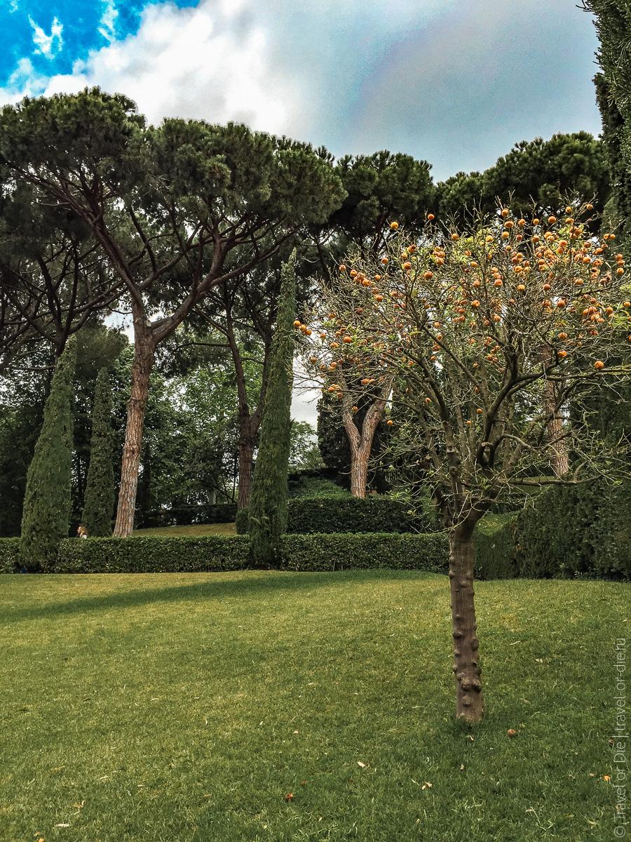 Сады Святой Клотильды в Ллорет де Мар 13