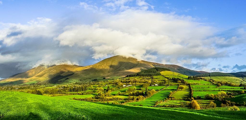 гиды в ирландии