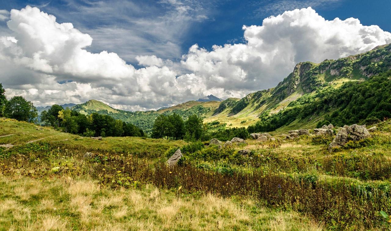 Альпийские луга Абхазии