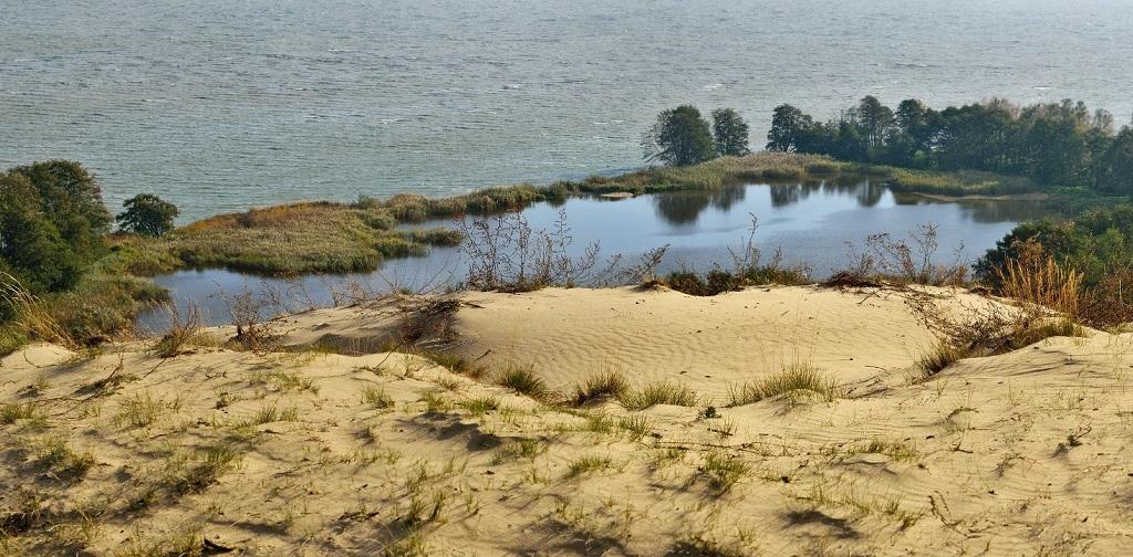 озеро лебедь экскурсия куршская коса из калининграда