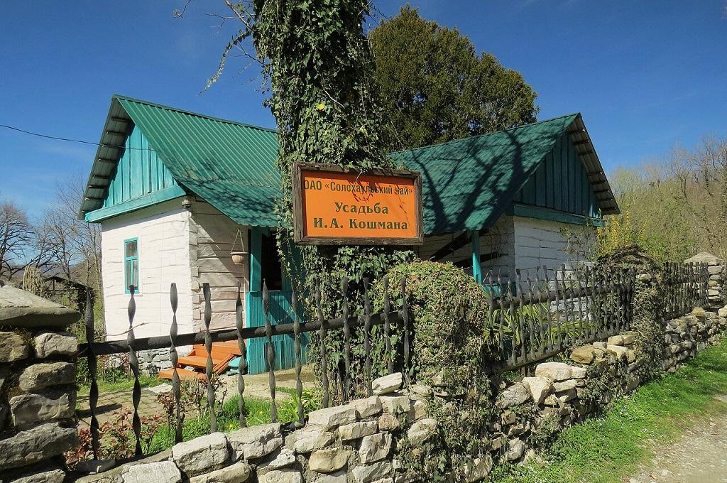 Экскурсии на чайные плантации Солох-Аул