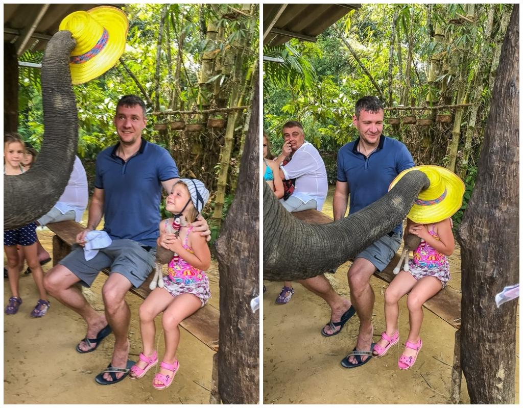 экскурсия као лак с пхукета шоу со слоном