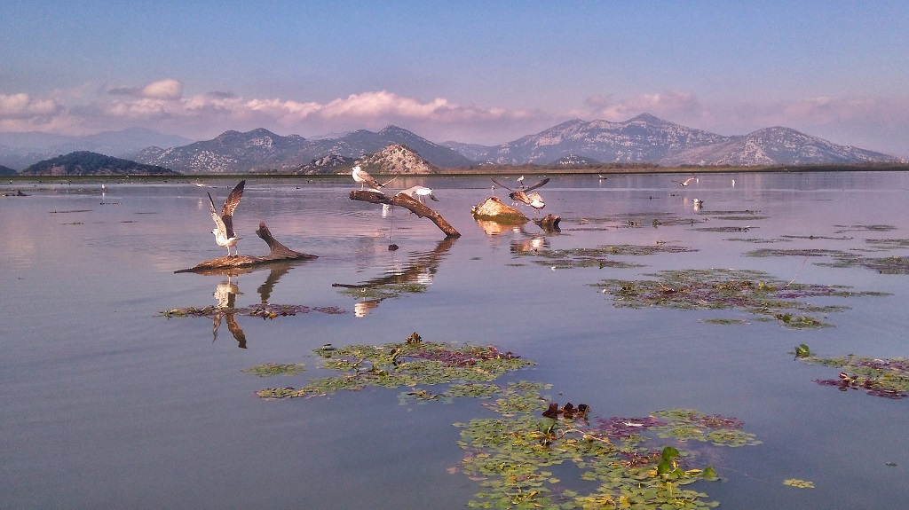 Экскурсии из Тивата по Черногории