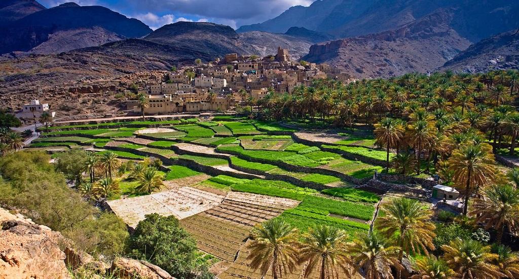 Экскурсии в Омане