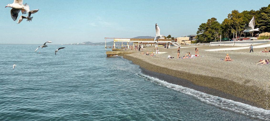 Пляж Чайка центральный пляж Адлера цены, отзывы, фото