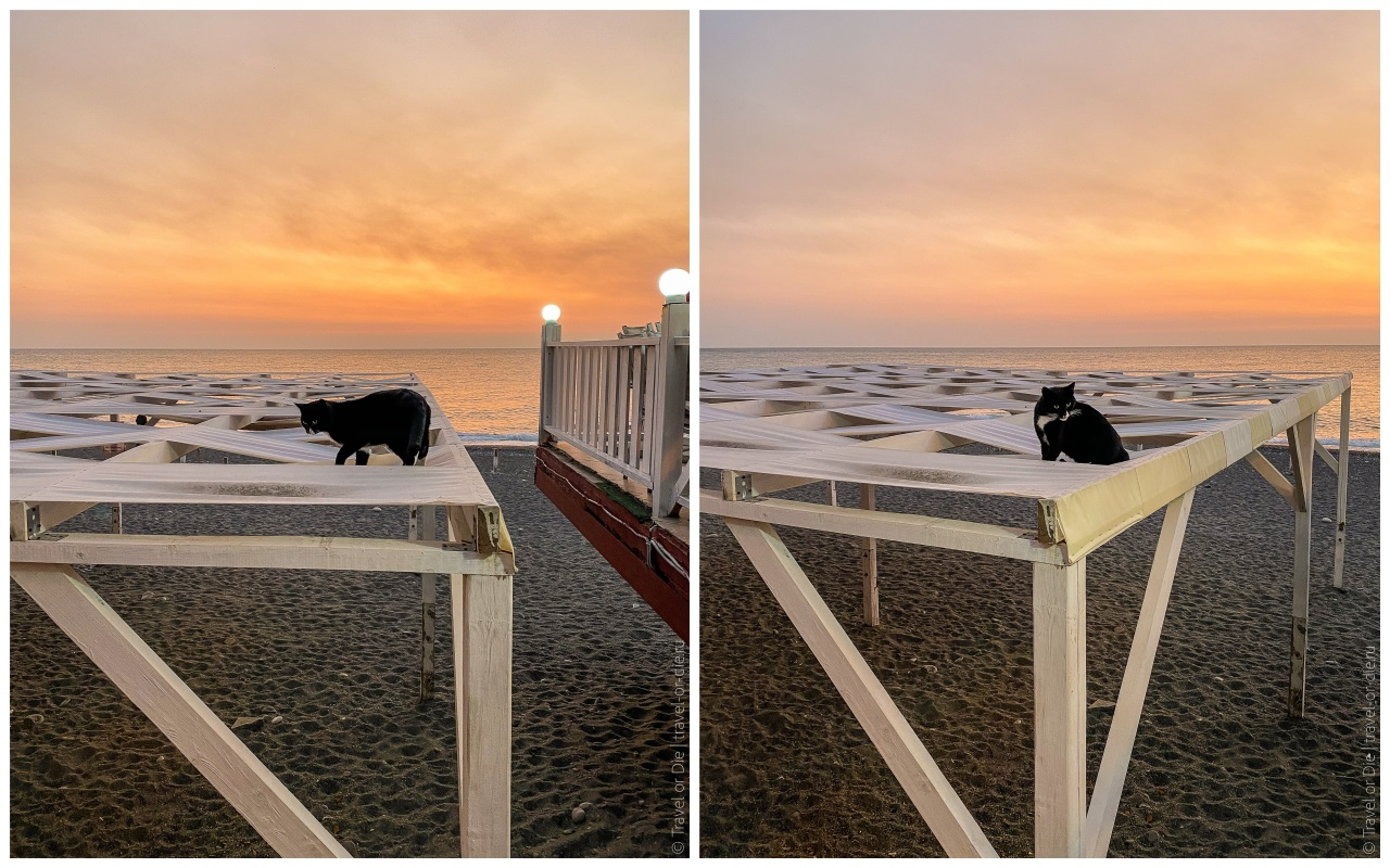 пляж чайка коты адлер сочи