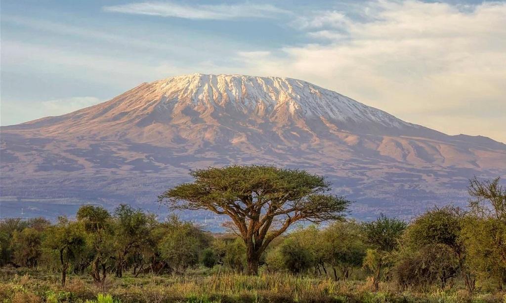 Восхождение на Килиманджаро цена с гидом