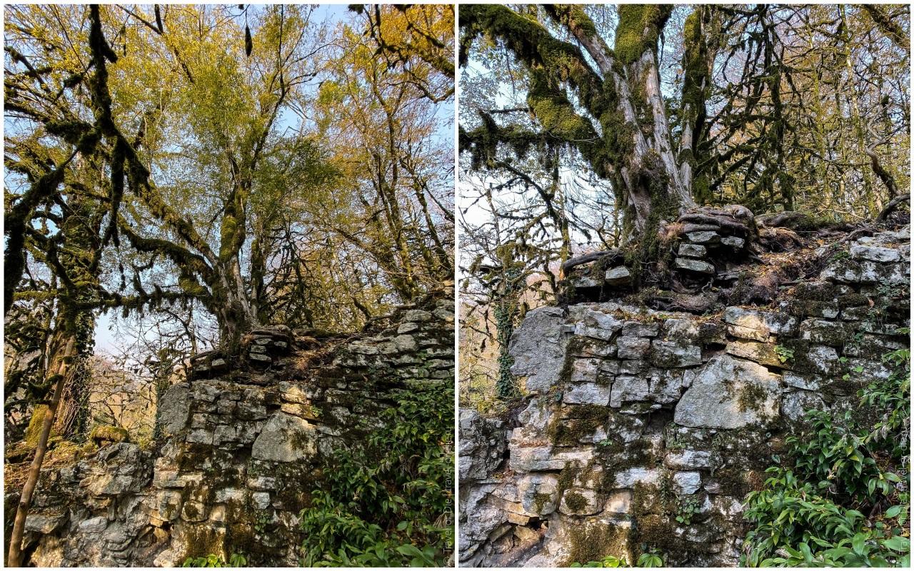 каньон чертовы ворота старая крепость