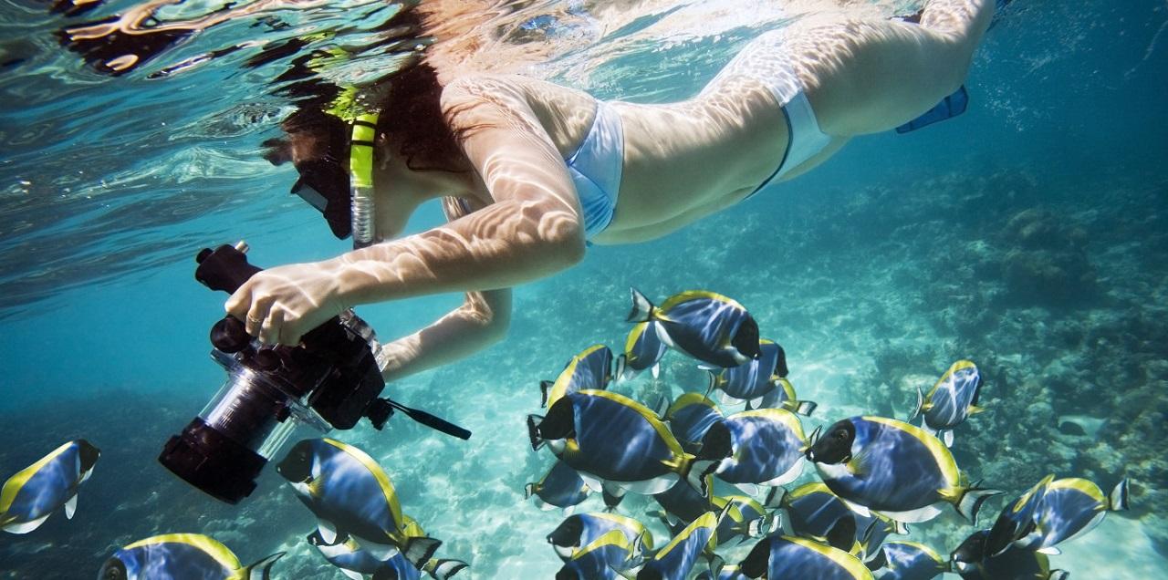 Где поплавать с маской в Шарм-эль-Шейхе