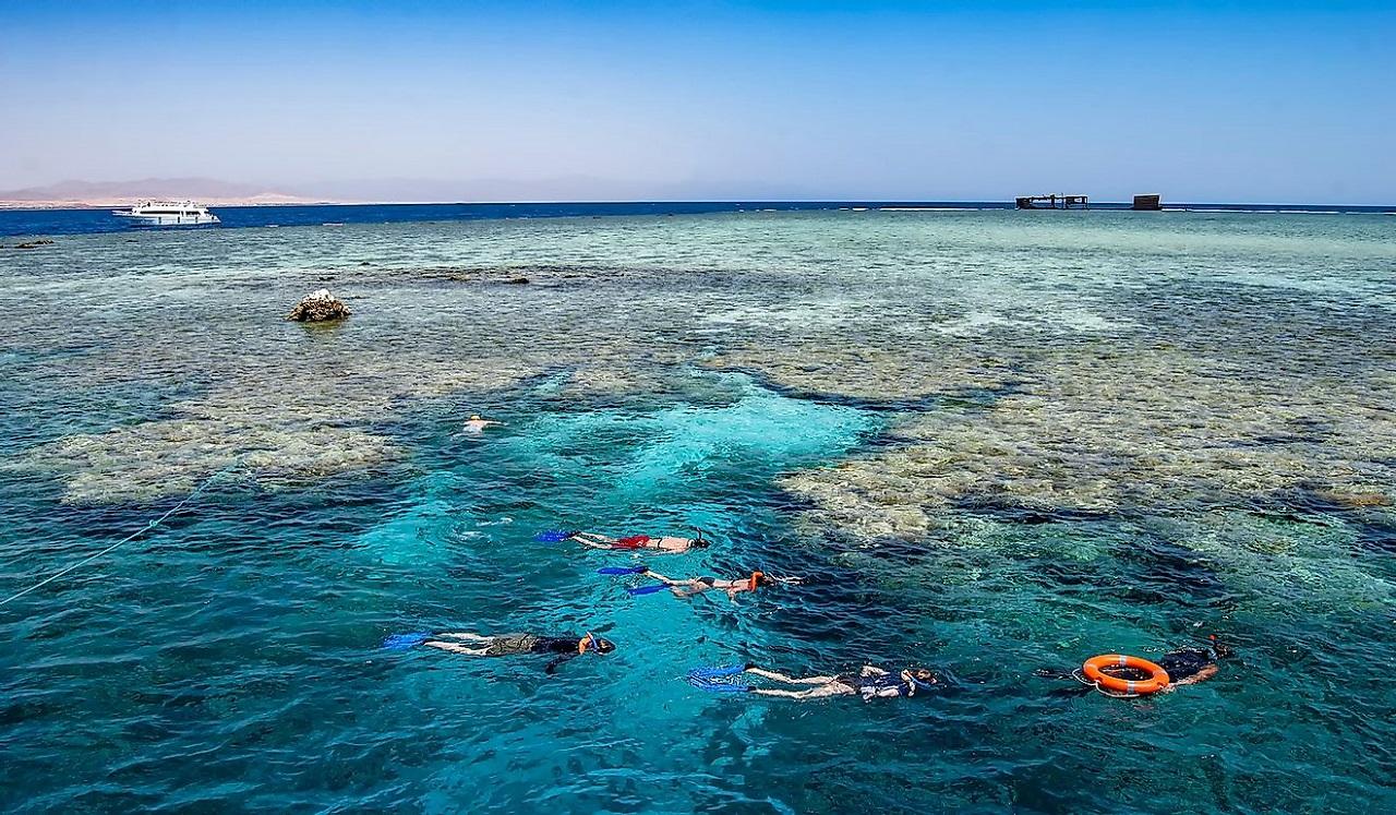 ТОП-5 мест для снорклинга в Шарме - Остров Тиран
